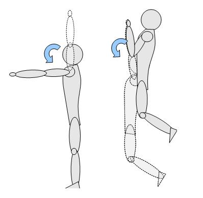 panca piana muscoli coinvolti - schiena